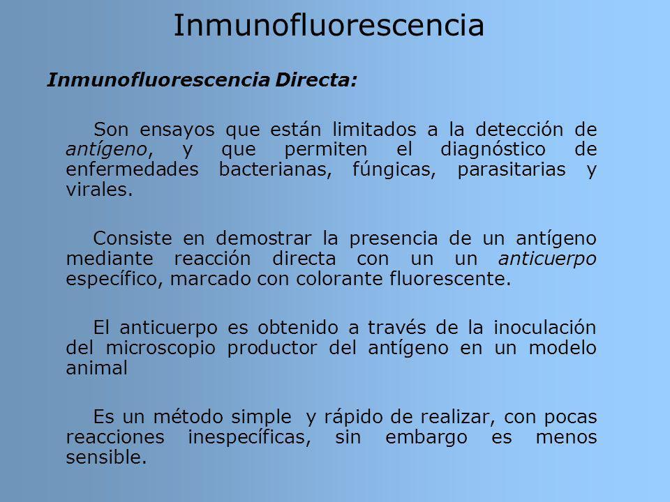 Inmunofluorescencia Inmunofluorescencia Directa: