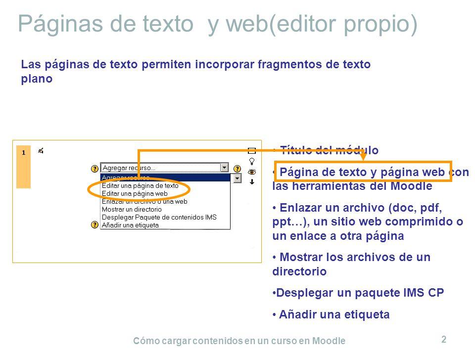 Páginas de texto y web(editor propio)