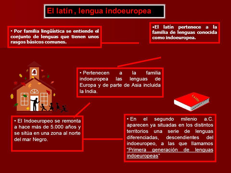 El latín , lengua indoeuropea