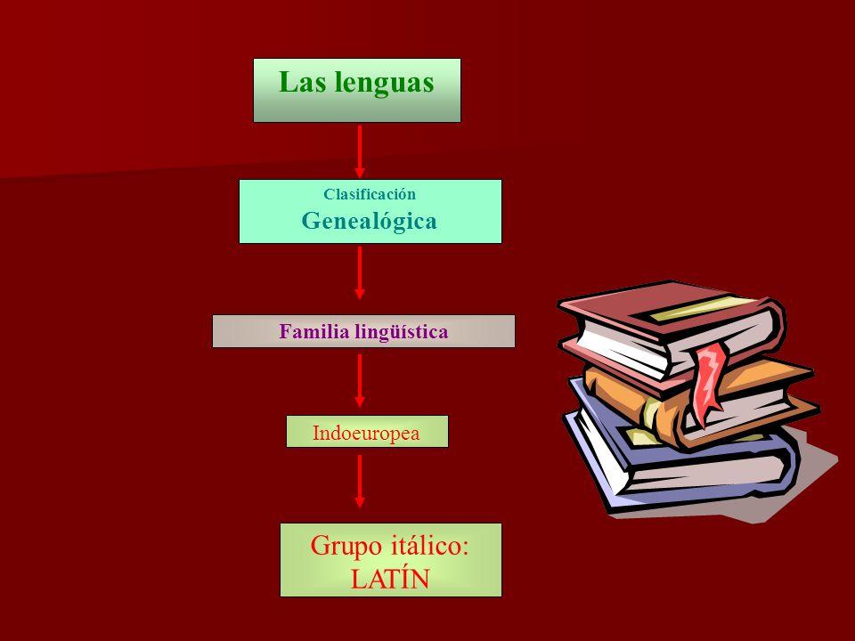 Las lenguas Grupo itálico: LATÍN Genealógica Familia lingüística