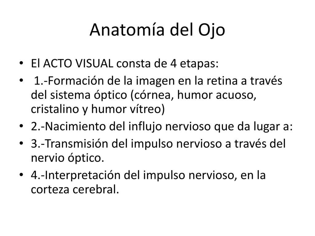 Contemporáneo Reglas Fresco Anatomía De Una Actitud Elaboración ...