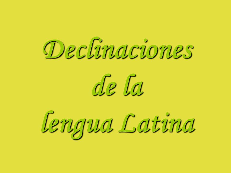 Declinaciones de la lengua Latina
