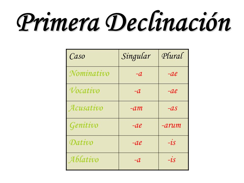 Primera Declinación Caso Singular Plural Nominativo -a -ae Vocativo