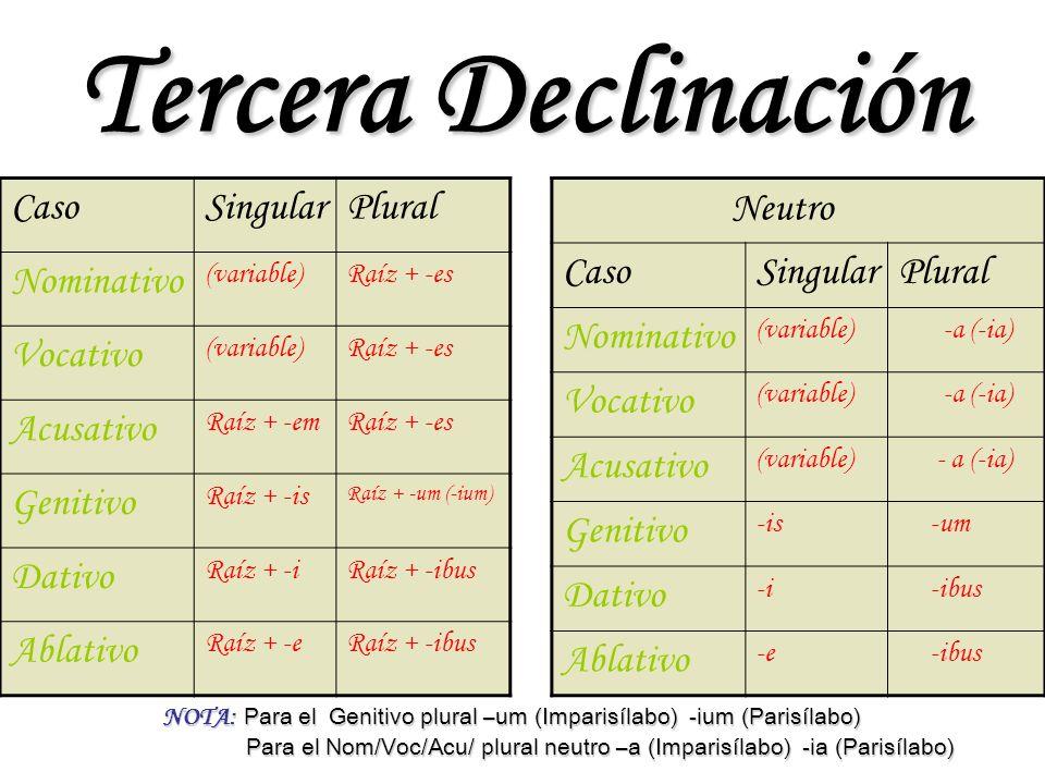 Tercera Declinación Caso Singular Plural Nominativo Vocativo Acusativo