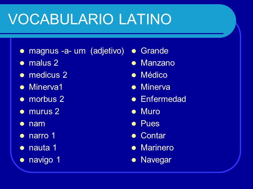 VOCABULARIO LATINO magnus -a- um (adjetivo) malus 2 medicus 2 Minerva1