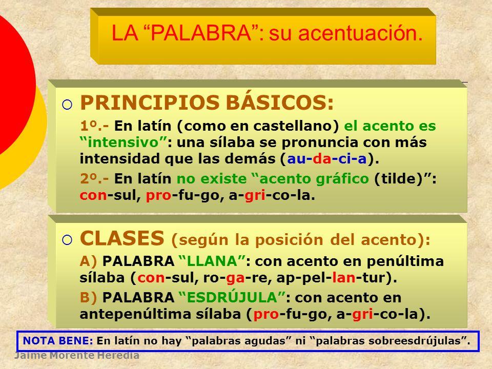 LA PALABRA : su acentuación.