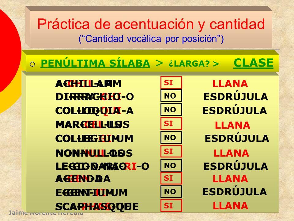 Práctica de acentuación y cantidad ( Cantidad vocálica por posición )