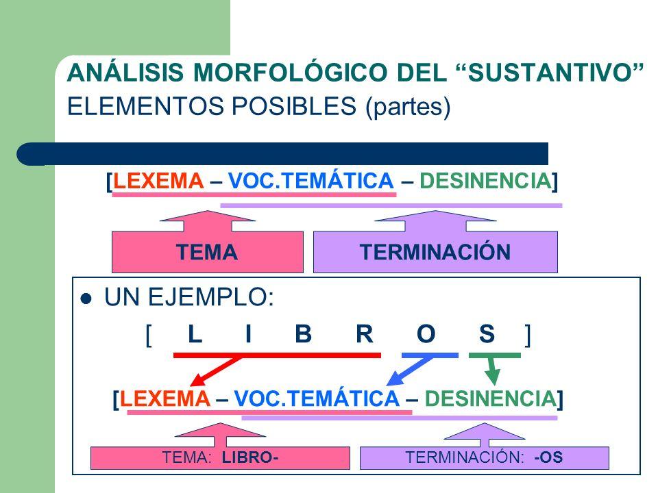 ANÁLISIS MORFOLÓGICO DEL SUSTANTIVO ELEMENTOS POSIBLES (partes)