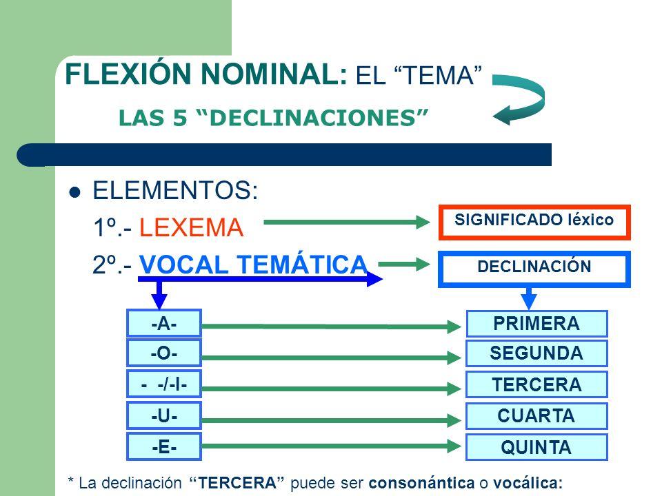 FLEXIÓN NOMINAL: EL TEMA
