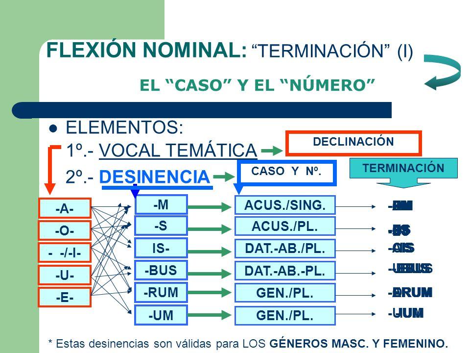 FLEXIÓN NOMINAL: TERMINACIÓN (I)