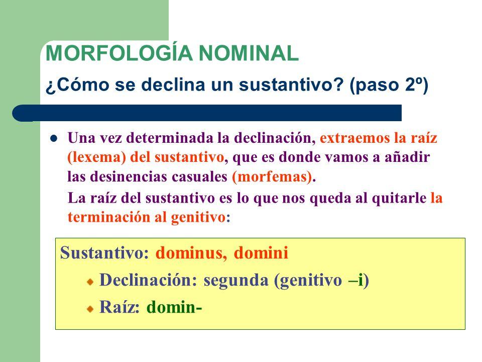 MORFOLOGÍA NOMINAL ¿Cómo se declina un sustantivo (paso 2º)