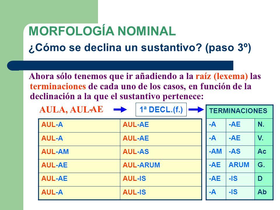 MORFOLOGÍA NOMINAL ¿Cómo se declina un sustantivo (paso 3º)