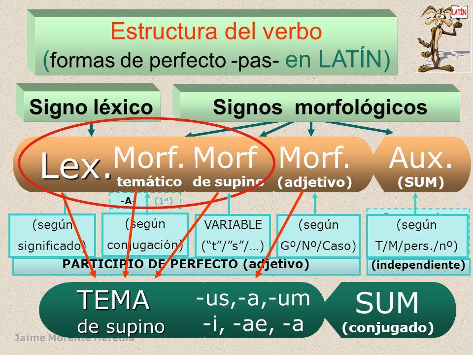 PARTICIPIO DE PERFECTO (adjetivo)