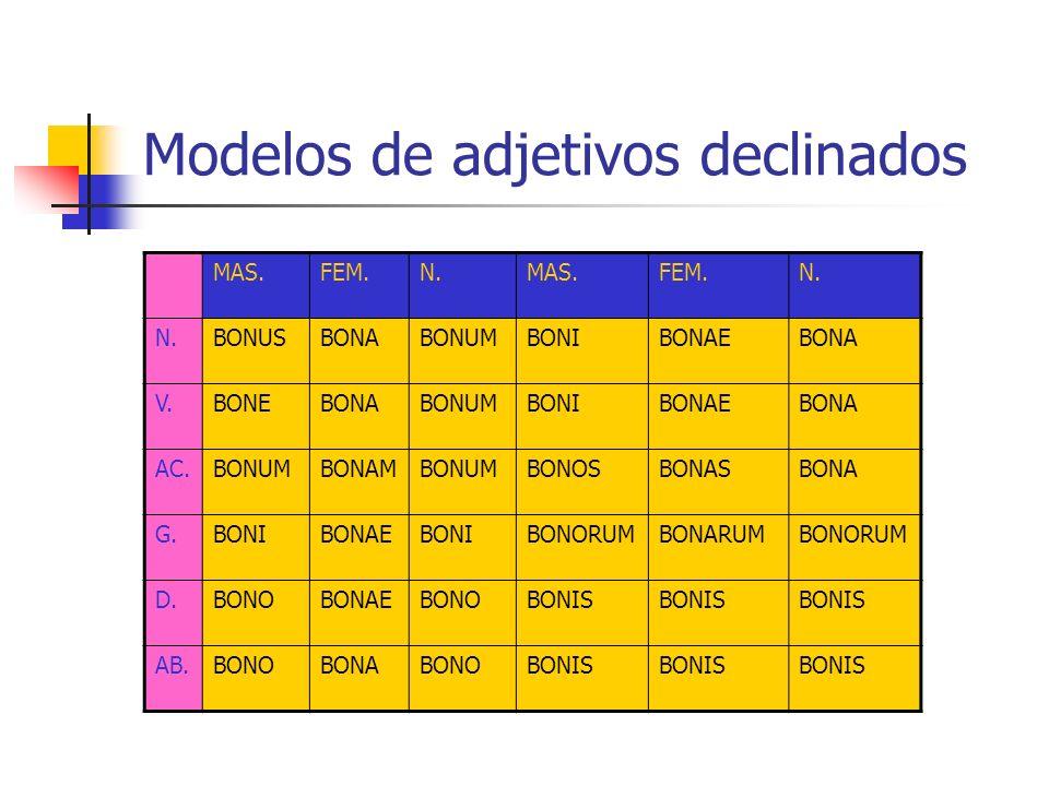Modelos de adjetivos declinados