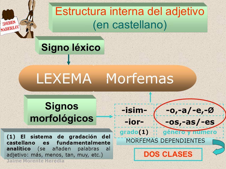 LEXEMA Morfemas Estructura interna del adjetivo (en castellano)