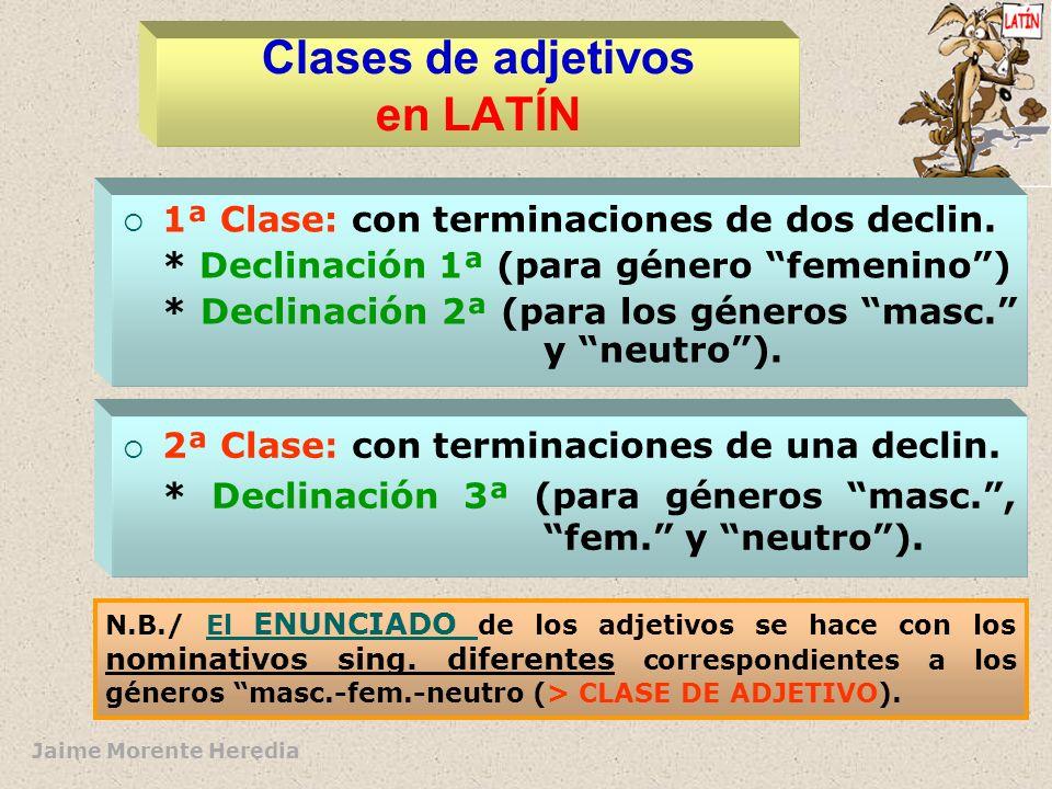 Clases de adjetivos en LATÍN