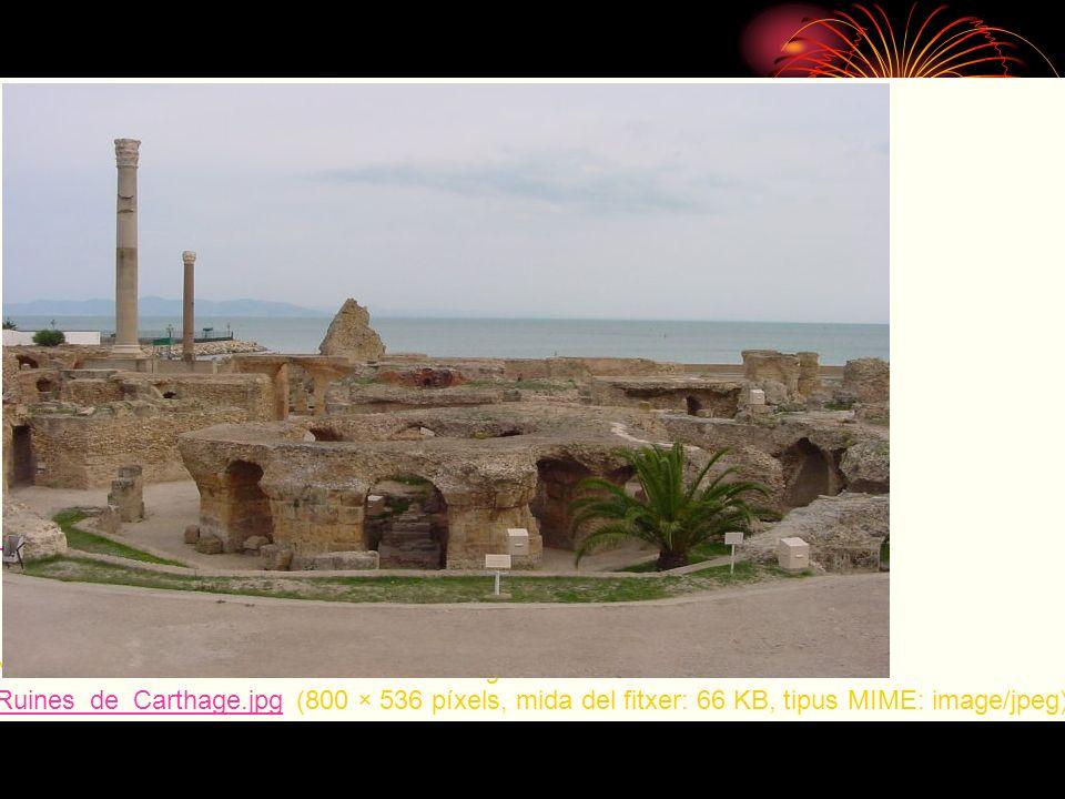 No hi ha una versió amb una resolució més gran. Ruines_de_Carthage