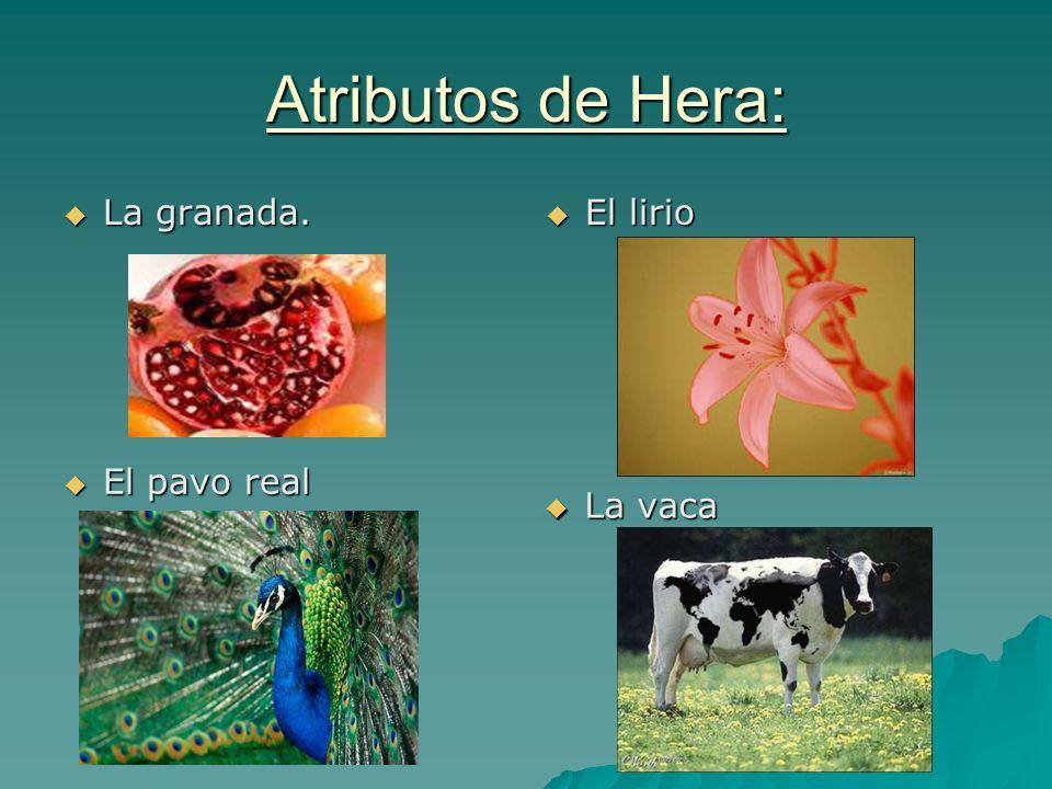 Atributos de Hera: La granada. El lirio El pavo real La vaca