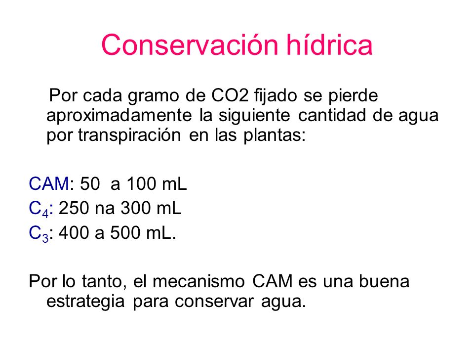 Conservación hídrica Por cada gramo de CO2 fijado se pierde aproximadamente la siguiente cantidad de agua por transpiración en las plantas: