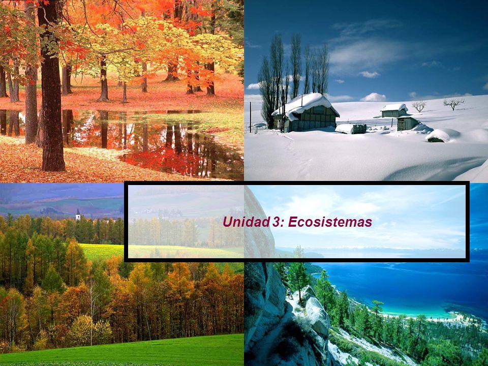 Unidad 3: Ecosistemas