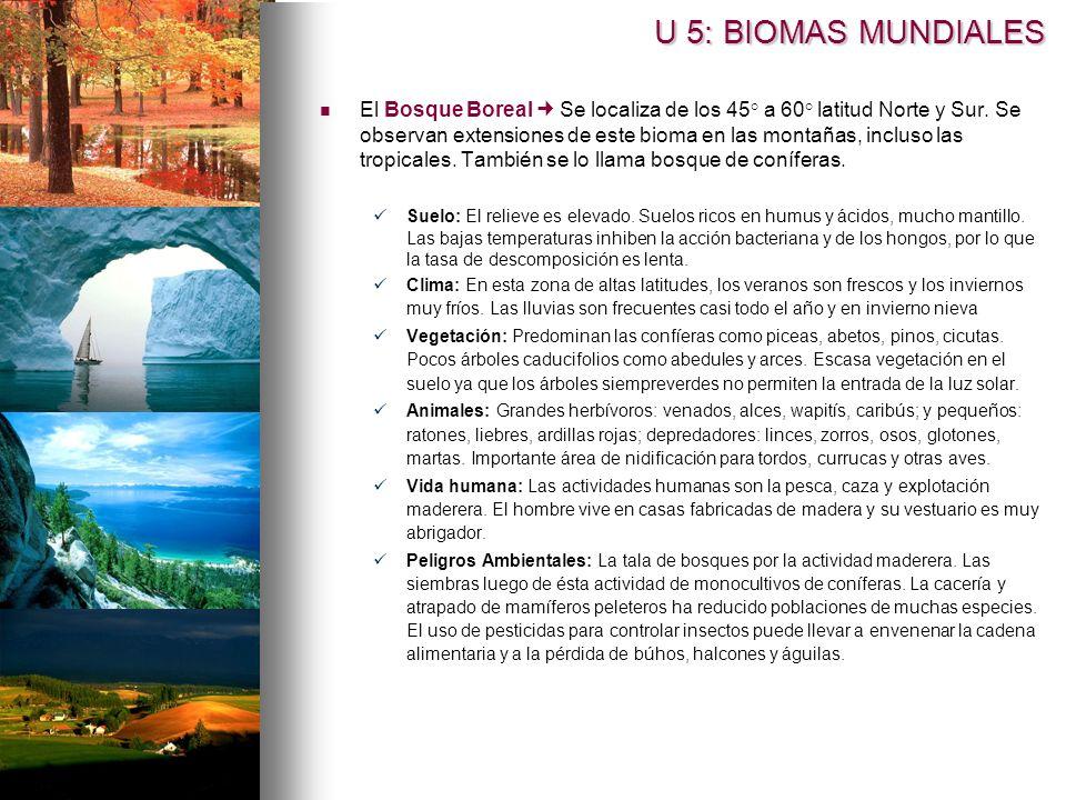 U 5: BIOMAS MUNDIALES