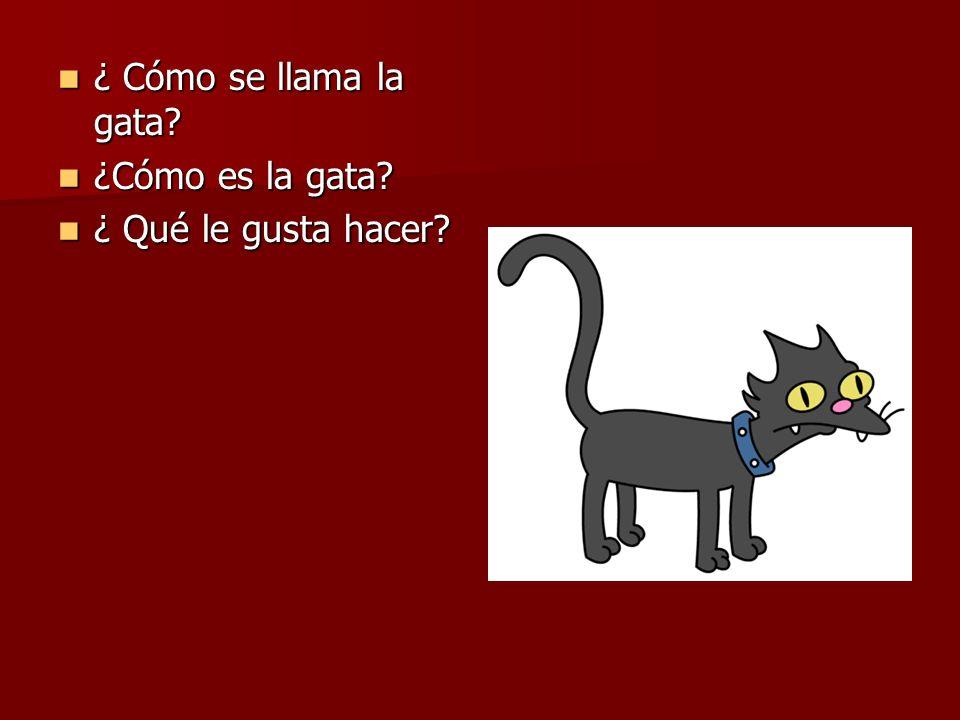 ¿ Cómo se llama la gata ¿Cómo es la gata ¿ Qué le gusta hacer