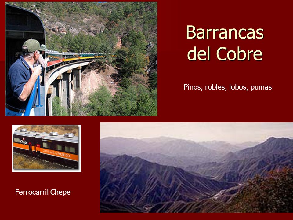 Barrancas del Cobre Pinos, robles, lobos, pumas Ferrocarril Chepe