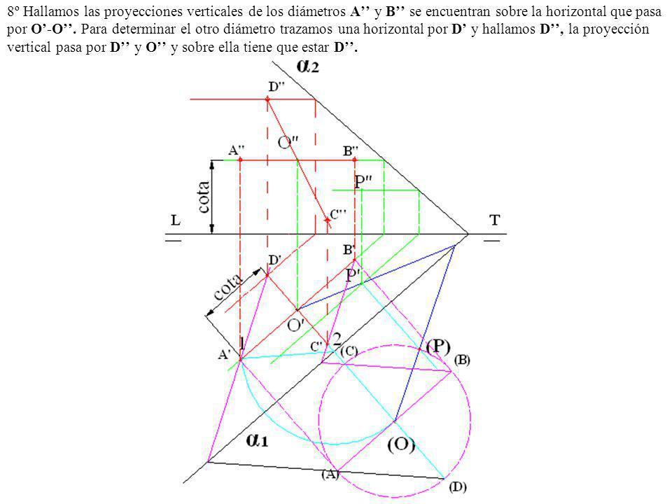 8º Hallamos las proyecciones verticales de los diámetros A'' y B'' se encuentran sobre la horizontal que pasa por O'-O''.