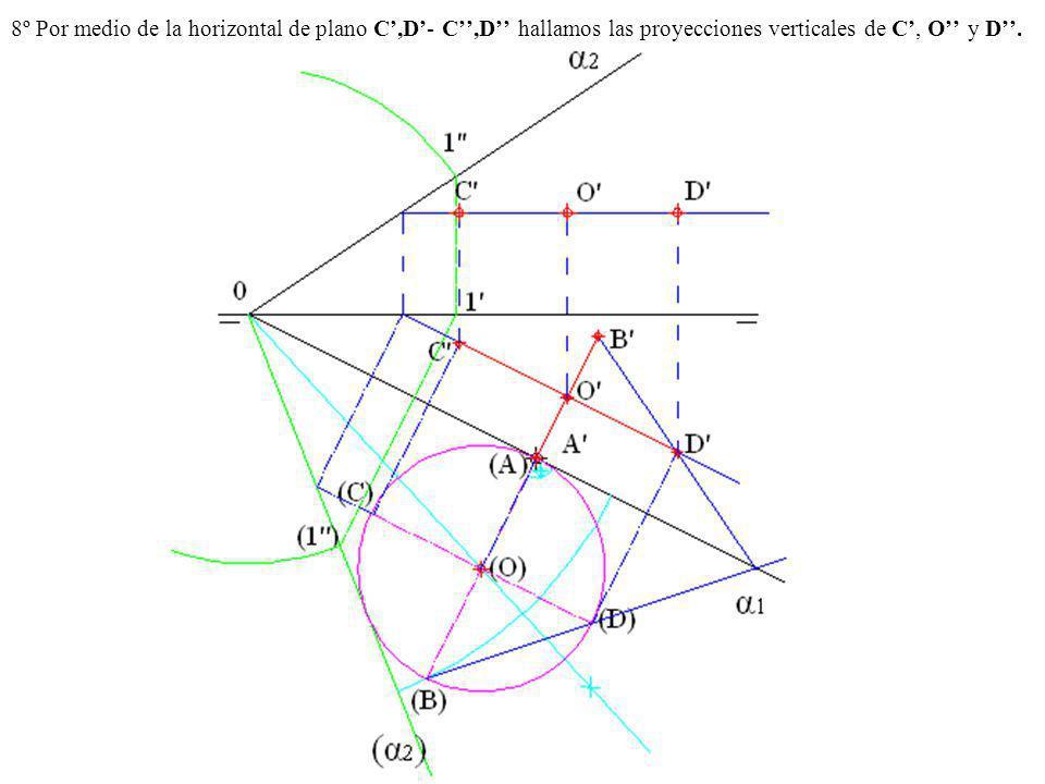 8º Por medio de la horizontal de plano C',D'- C'',D'' hallamos las proyecciones verticales de C', O'' y D''.