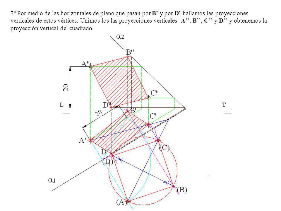 7º Por medio de las horizontales de plano que pasan por B' y por D' hallamos las proyecciones verticales de estos vértices.
