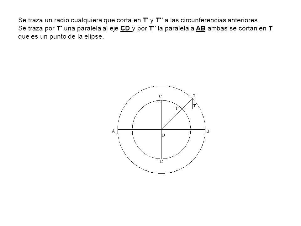 Se traza un radio cualquiera que corta en T y T a las circunferencias anteriores.