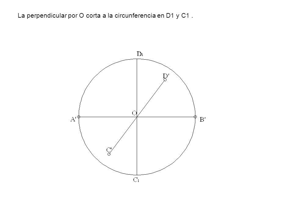 La perpendicular por O corta a la circunferencia en D1 y C1 .