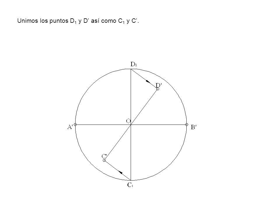 Unimos los puntos D1 y D' así como C1 y C'.