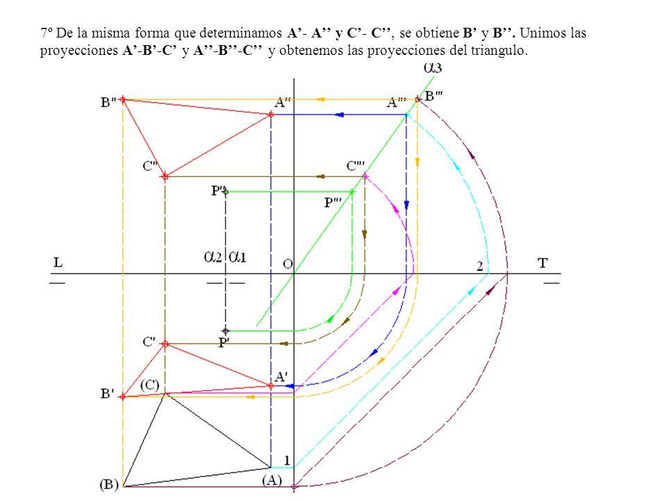 7º De la misma forma que determinamos A'- A'' y C'- C'', se obtiene B' y B''.