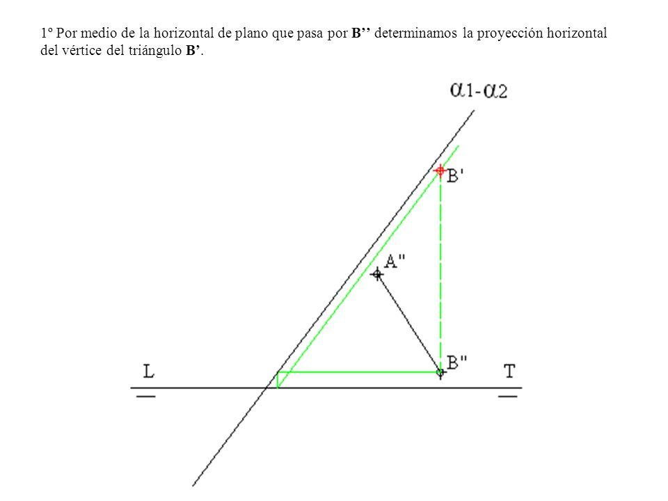 1º Por medio de la horizontal de plano que pasa por B'' determinamos la proyección horizontal del vértice del triángulo B'.