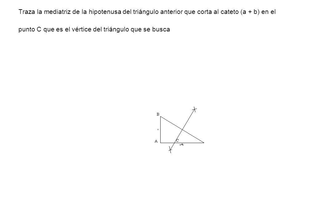 Traza la mediatriz de la hipotenusa del triángulo anterior que corta al cateto (a + b) en el punto C que es el vértice del triángulo que se busca