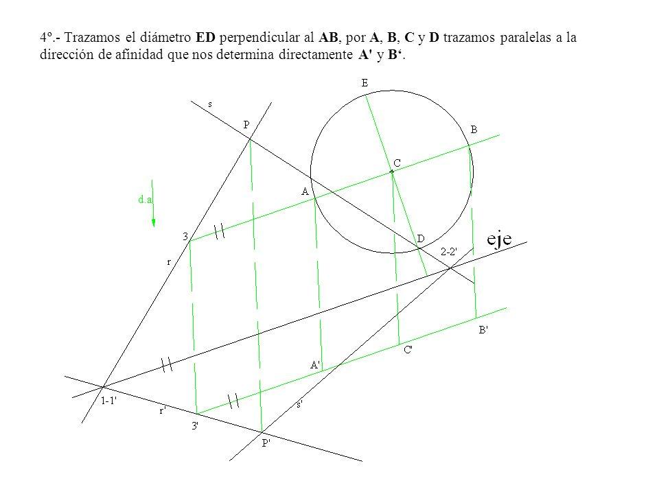 4º.- Trazamos el diámetro ED perpendicular al AB, por A, B, C y D trazamos paralelas a la dirección de afinidad que nos determina directamente A y B'.
