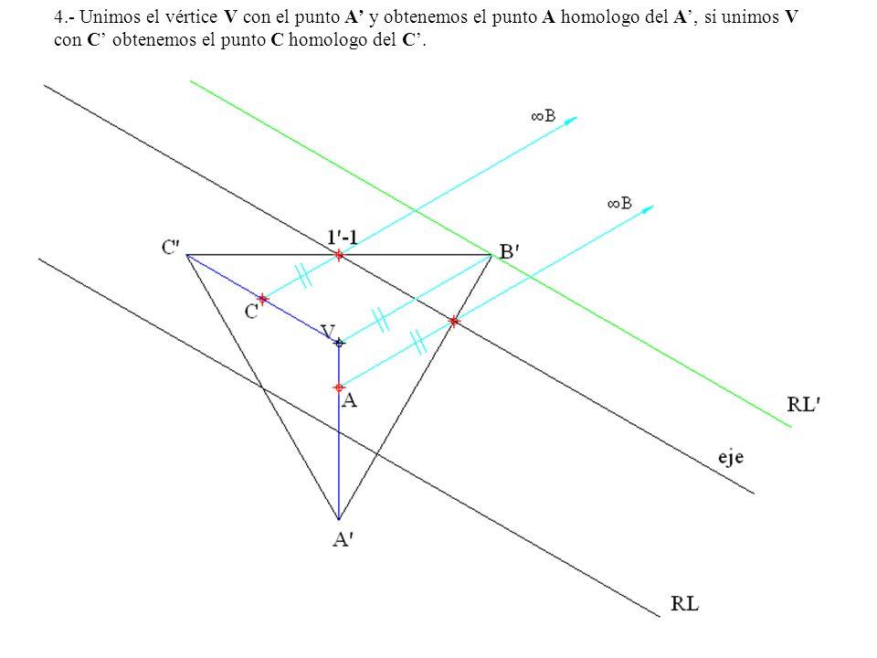 4.- Unimos el vértice V con el punto A' y obtenemos el punto A homologo del A', si unimos V con C' obtenemos el punto C homologo del C'.