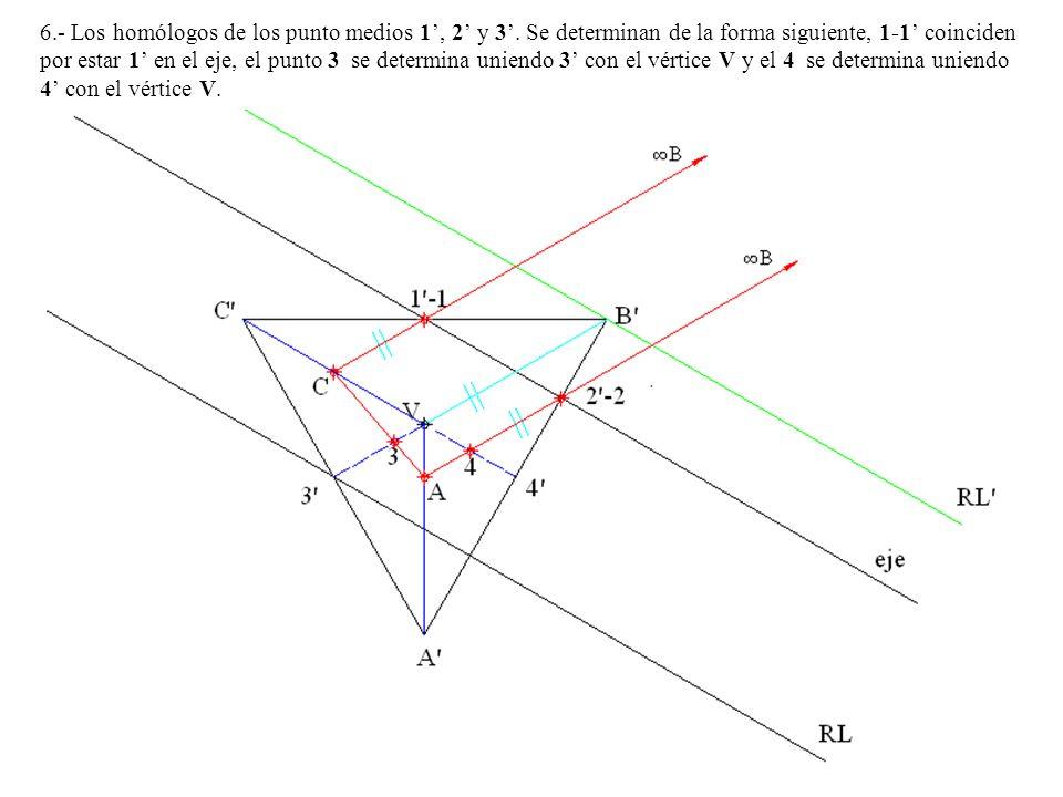 6. - Los homólogos de los punto medios 1', 2' y 3'