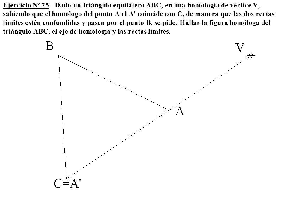Ejercicio Nº 25.- Dado un triángulo equilátero ABC, en una homología de vértice V, sabiendo que el homólogo del punto A el A coincide con C, de manera que las dos rectas límites estén confundidas y pasen por el punto B.