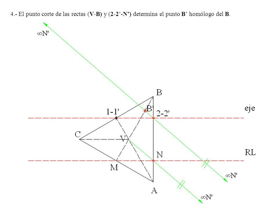 4.- El punto corte de las rectas (V-B) y (2-2'-N') determina el punto B' homólogo del B.