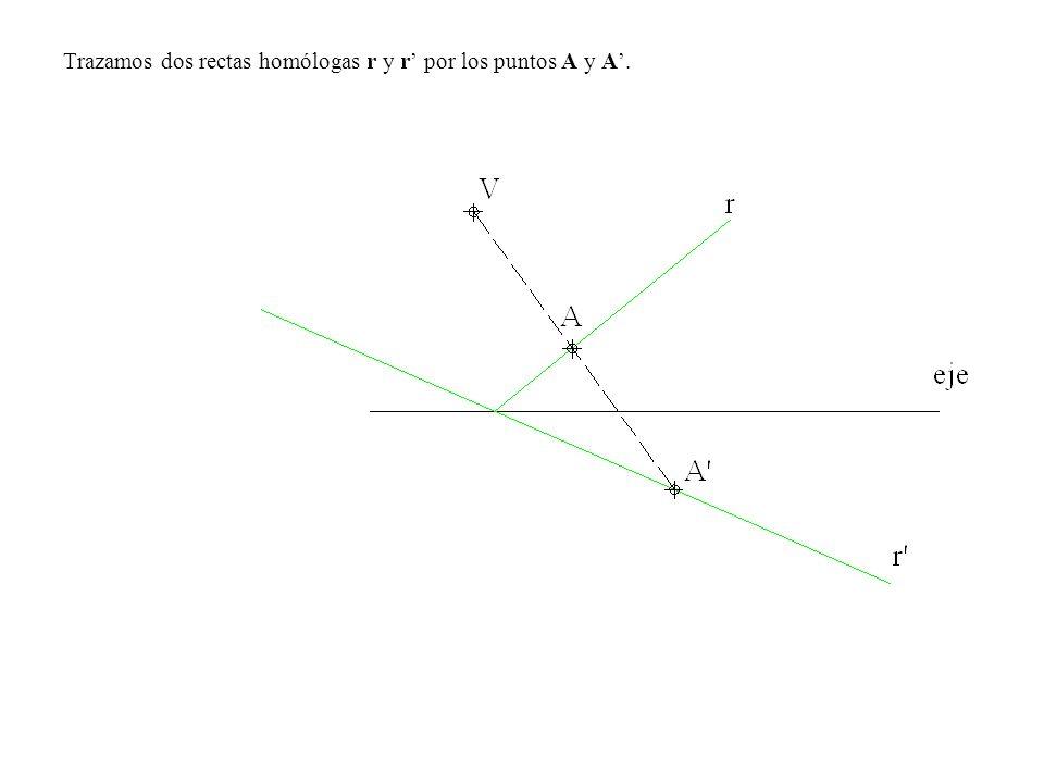 Trazamos dos rectas homólogas r y r' por los puntos A y A'.