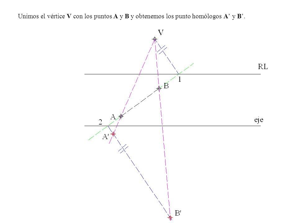 Unimos el vértice V con los puntos A y B y obtenemos los punto homólogos A' y B'.