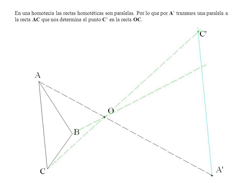 En una homotecia las rectas homotéticas son paralelas