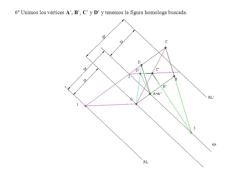 6º Unimos los vértices A', B', C' y D' y tenemos la figura homologa buscada.