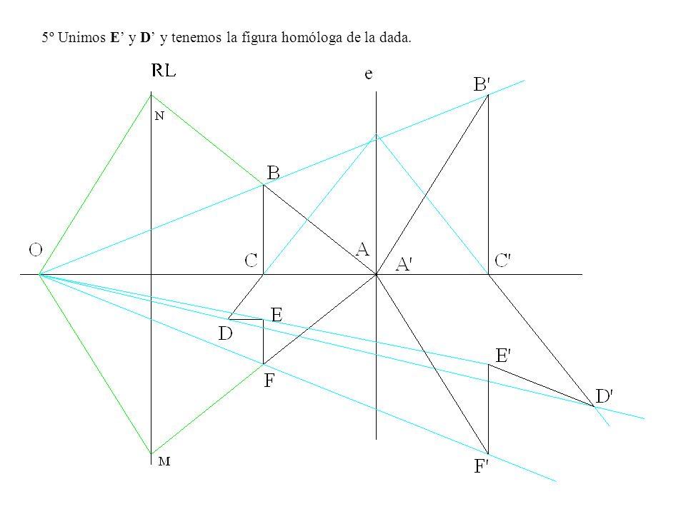 5º Unimos E' y D' y tenemos la figura homóloga de la dada.