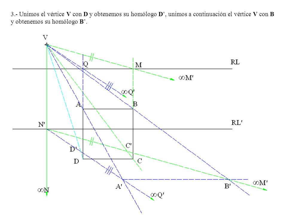 3.- Unimos el vértice V con D y obtenemos su homólogo D', unimos a continuación el vértice V con B y obtenemos su homólogo B'.