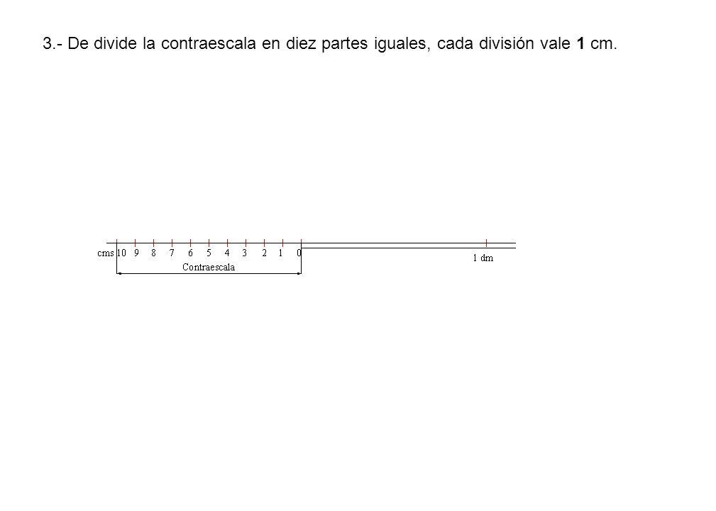 3.- De divide la contraescala en diez partes iguales, cada división vale 1 cm.