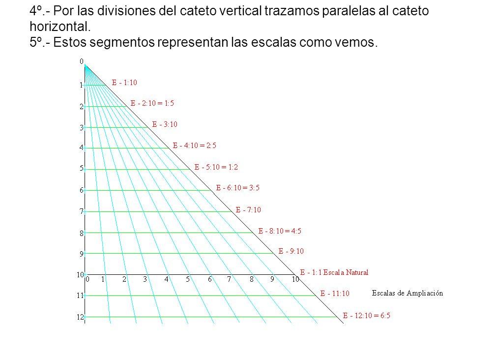 4º.- Por las divisiones del cateto vertical trazamos paralelas al cateto horizontal.