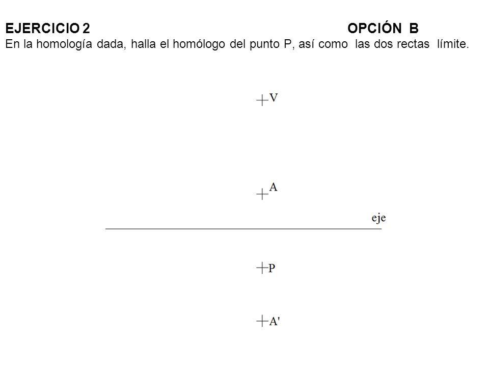 EJERCICIO 2 OPCIÓN B En la homología dada, halla el homólogo del punto P, así como las dos rectas límite.